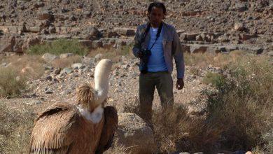 Photo of رضوان يصور صحراء الجزائر وينافس ناسيونال جيوغرافي