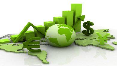 صورة الاقتصاد الأخضر في الجزائر يغري الشباب لفتح مؤسسات صغيرة