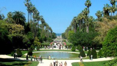 Photo of أول حديقة جزائرية مرشحة للتصنيف العالمي