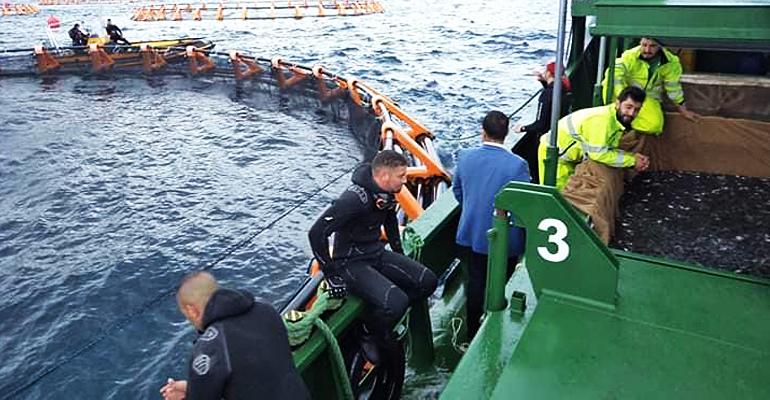Photo of تدريب وتشجيع الشباب الجزائريين على الاستثمار في الصيد البحري وتربية المائيات