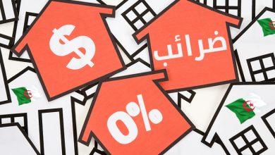 Photo of إعفاء مشاريع الشباب الجزائريين من جميع الضرائب والرسوم