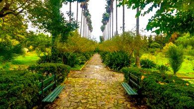 Photo of حديقة جامعية في الجزائر نسخة مصغرة عن حديقة التجارب