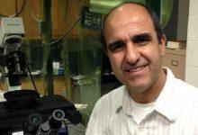 Photo of باحث جزائري في الفيزياء تمول الوكالات العالمية أبحاثه