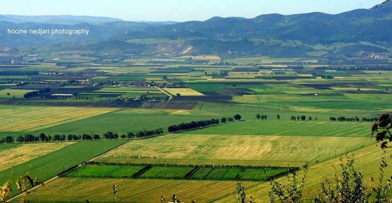 صورة نهب الجزائر : أرض أدهشت الأوربيين بخصوبتها الخرافية