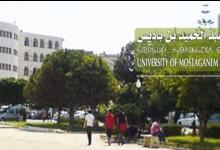 صورة توظيف أساتذة مساعدين في جامعة مستغانم