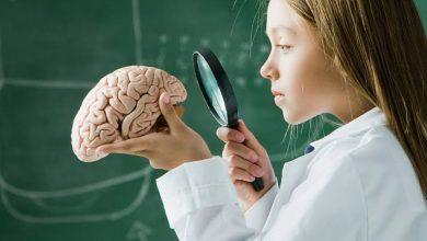 صورة الإنسان يولد بجزء في الدماغ مبرمج للقراءة